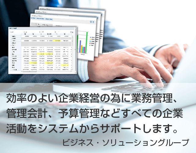 効率のよい企業経営の為に業務管理、管理会計、予算管理などすべての企業活動をシステムからサポートします。ビジネス・ソリューショングループ